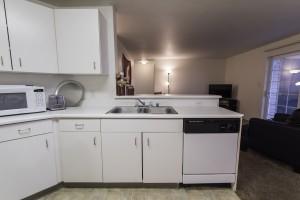 Sink/Dishwasher/Living Room